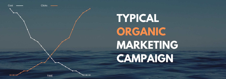 Organic marketing ROI